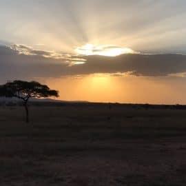 Covid19 in Tanzania: implications for …….