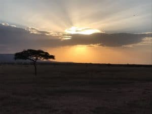 Covid19 in Tanzania: gevolgen voor ….